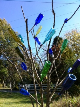 Bottletree on Knight St