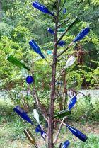 Wyrick St cedar bottletree 2