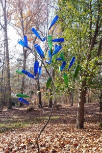 blue and green bottletree jeremy stollings