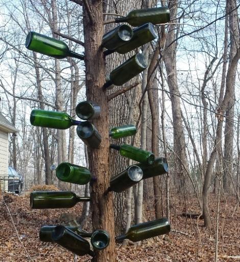 wyngate bottletree 2