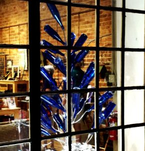Blue bottletree at Hillsborough Arts Council